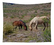 Out In The Open Range Tapestry