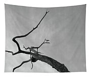 Out On A Limb Tapestry