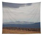 Overcast On The Sandias Tapestry