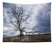 Overlook Tapestry