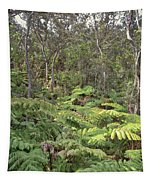 Overlooking The Rainforest Tapestry