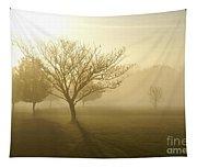 Ozarks Misty Golden Morning Sunrise Tapestry