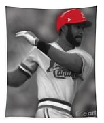 Ozzie Smith Tapestry