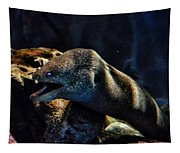 Pacific Moray Eel Tapestry