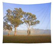 Paddock Sunrise Tapestry