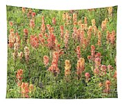 Paintbrush Beauties Tapestry