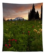 Paintbrush Sunset Tapestry