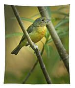 Painted Bunting Female Tapestry