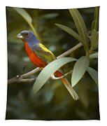 Painted Bunting Male Tapestry