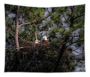Pair Of Bald Eagles In Nest Tapestry