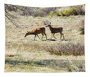 Pair Of Mule Deer Grazing At Chatfield Tapestry