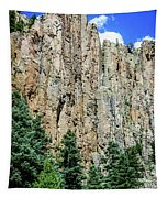 Palisades - Cimarron Canyon State Park - New Mexico Tapestry
