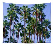 Palm Trees. California, Sunny Beauty Tapestry