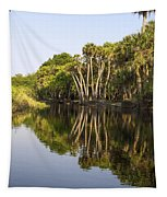 Palm Trees Reflections Tapestry