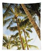 Palms Against Blue Sky Tapestry