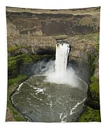 Palouse Falls State Park Tapestry