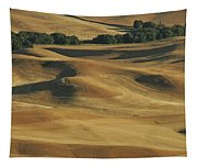 Palouse Patchwork By Jean Noren Tapestry