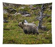 Panda In Many Glacier Tapestry
