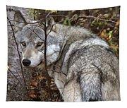 Panoramic Gray Wolf Yukon Tapestry