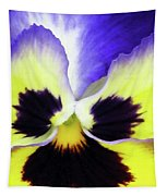 Pansy 10 - Thoughts Of You Tapestry