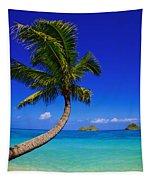 Paradise Palm Over Lanikai Tapestry