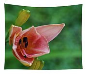 Partially Open Pink Lily Blossom Tapestry