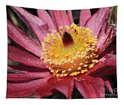Pasque Flower Macro Tapestry