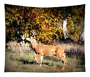 Passing Buck In Autumn Field Tapestry