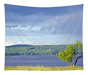 Passing Storm Tapestry