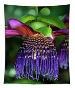 Passion Flower Ver. 10 Tapestry