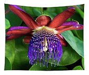 Passion Flower Ver. 13 Tapestry