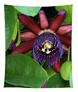 Passion Flower Ver. 8 Tapestry