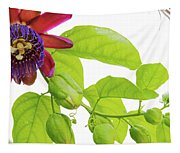 Passion Flower Ver. 9 Tapestry