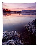 Pastel Dawn Tapestry