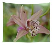 Pastel Orchid Tapestry