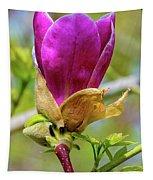 Pastel Spring Tapestry