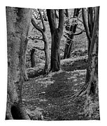 Path In Crownest Woods Tapestry