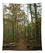 Path In The Woods Tapestry
