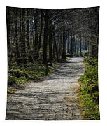 Path In The Woods Of Ireland's Coole Park Tapestry by James Truett