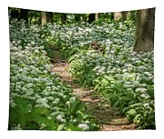 Path Through A Deciduous Forest, Wild Garlic Tapestry