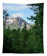 Path Through Nature Tapestry