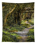 Path Through Yeats' Fairy Forest Tapestry by James Truett