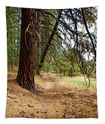 Path To Enlightenment 2 Tapestry