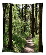 Pathway Through The Woods Tapestry