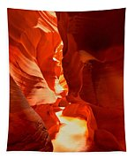 Pathway Through Upper Antelope Tapestry