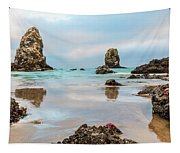 Patrick And Friends Visit Cannon Beach Tapestry