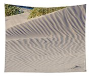 Patterns In The Sand Tapestry