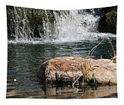 Peace In The Park Tapestry