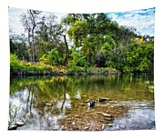 Peaceful Morning On Cibolo Creek Tapestry
