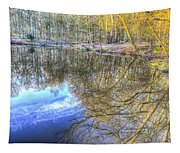 Peaceful Pond Reflections  Tapestry